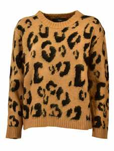 Picture of Tpn | Animalier Sweater